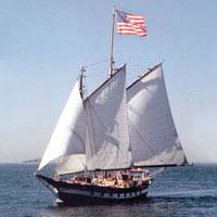 all_aboard_the_mystic_whaler2
