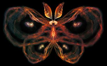 feature_moth_janna levin