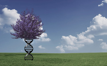 destiny_and_dna_our_pliable_genome