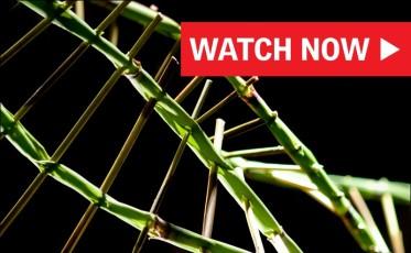 8_Designer_Watch Now_800x494_v2