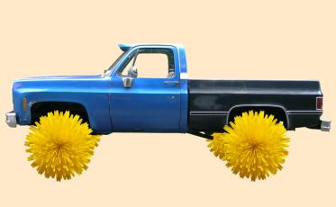 dandelion-tire