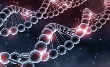 Feat_Epigenetics_000034588494