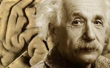Einstein Brain v1
