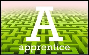 Neuroeconomist's Apprentice