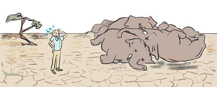 killelephants