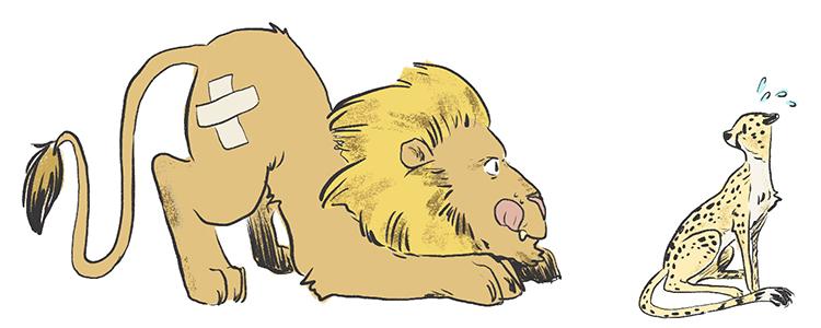 lioncheetah