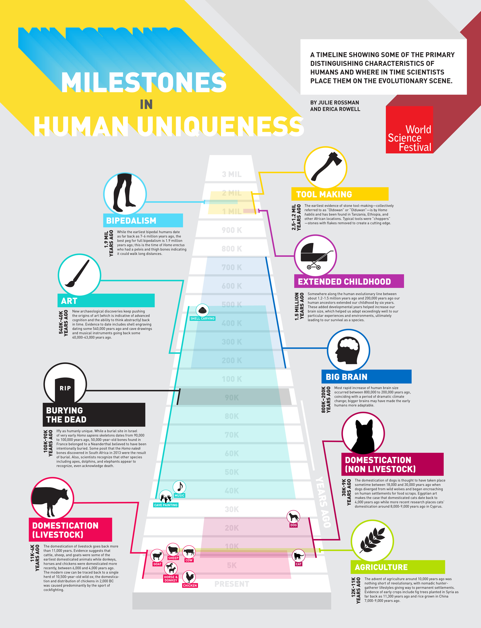human_uniqueness_infographic-01
