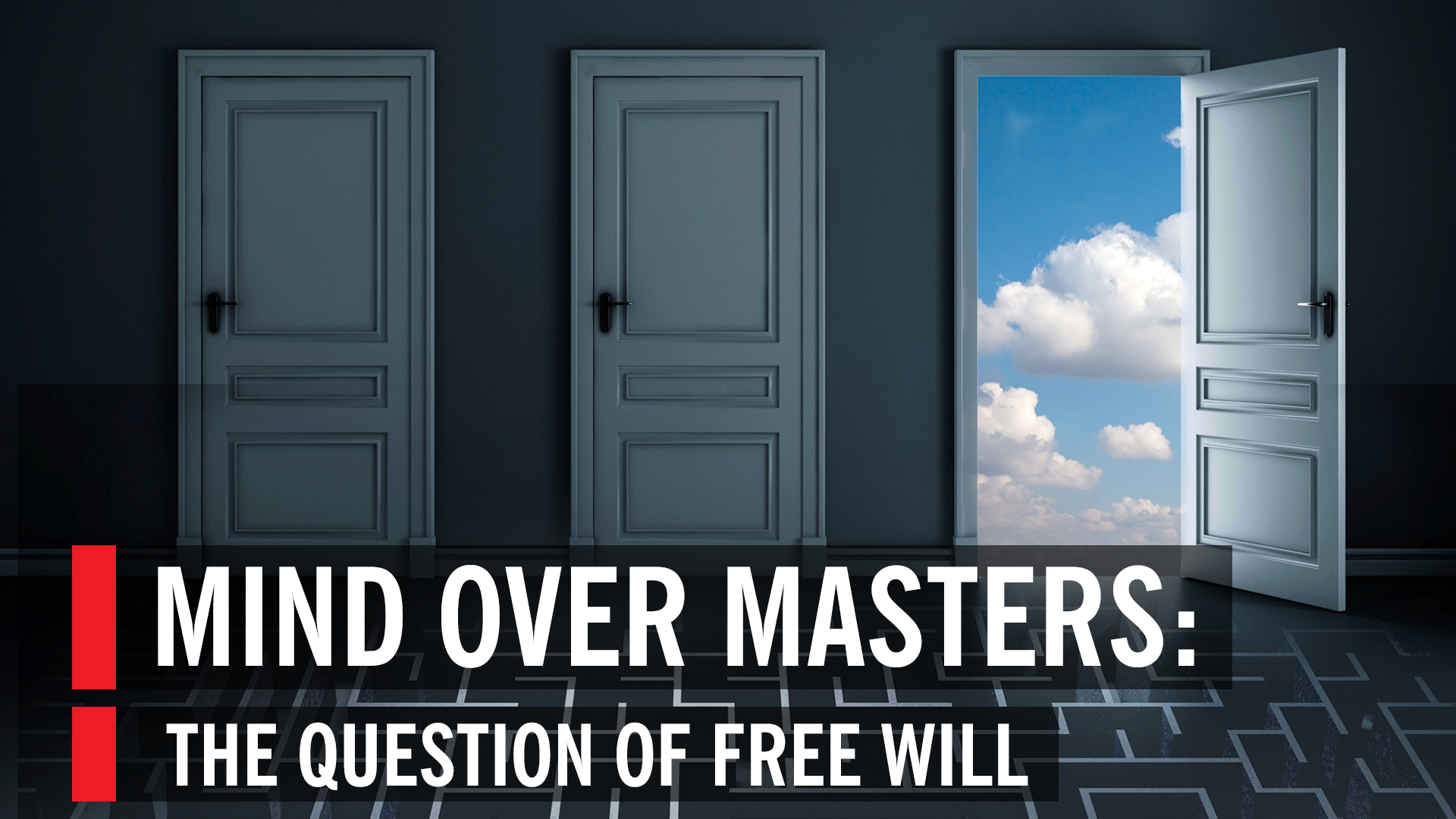 whos in charge free will and the science of the brain