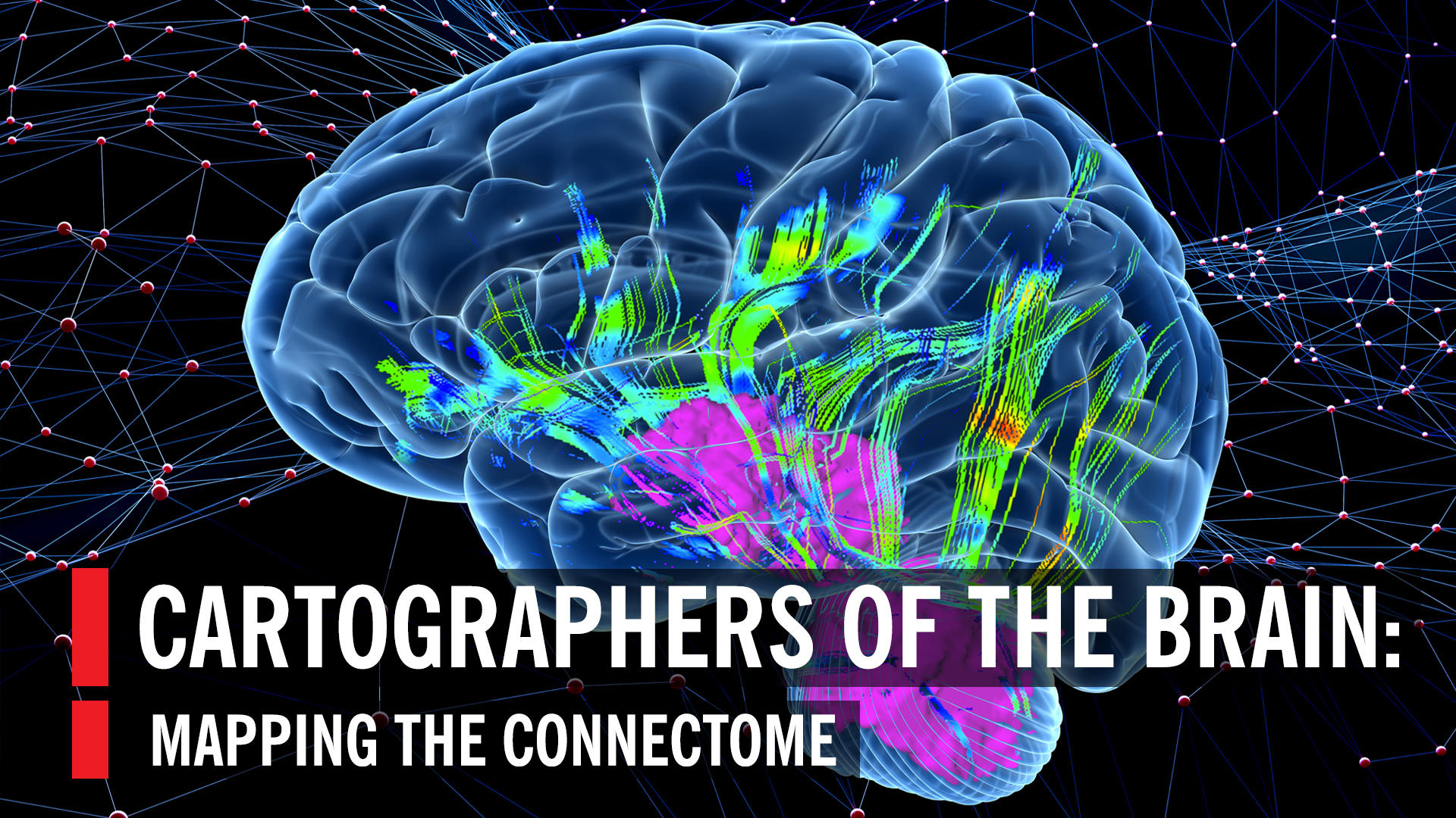Cartographers Of The Brain Mapping The Connectome World Science