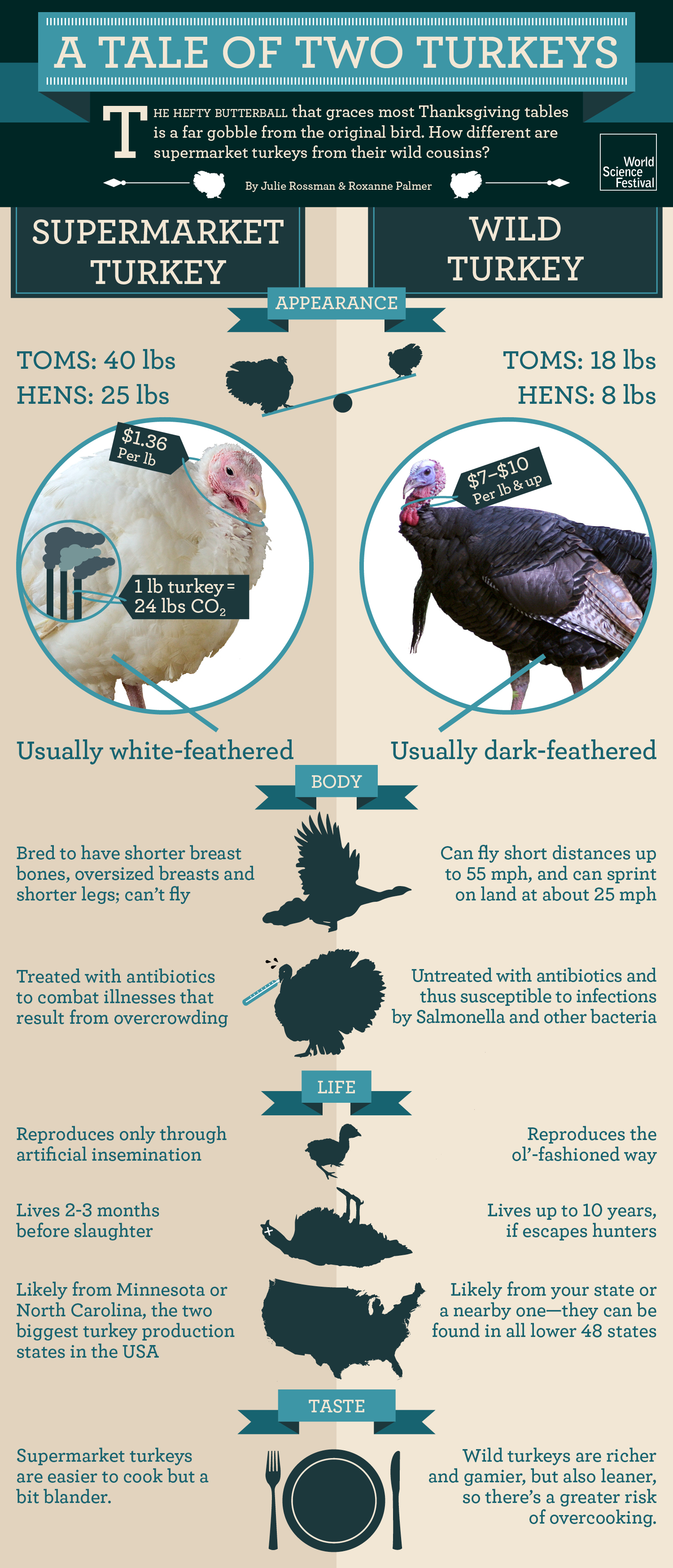 A Tale of Two Turkeys